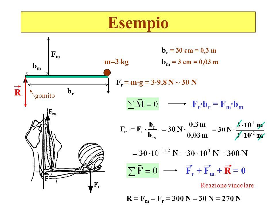 Esempio bmbm F r = m·g = 3·9,8 N ~ 30 N brbr FmFm m=3 kg b r = 30 cm = 0,3 m b m = 3 cm = 0,03 m F r ·b r = F m ·b m gomito R Reazione vincolare F r +