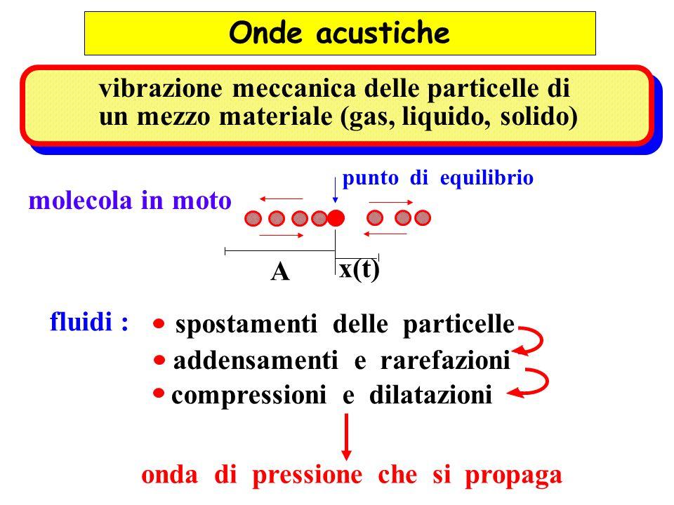 punto di equilibrio molecola in moto A x(t) spostamenti delle particelle compressioni e dilatazioni fluidi : addensamenti e rarefazioni onda di pressi