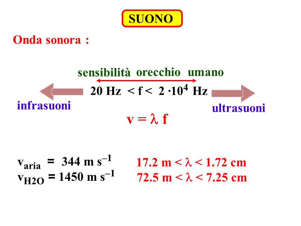 SUONO Onda sonora : orecchio umano sensibilità 20 Hz < f < 2 ·10 4 Hz infrasuoni ultrasuoni v = f v aria = 344 m s –1 v H2O = 1450 m s –1 17.2 m < < 1