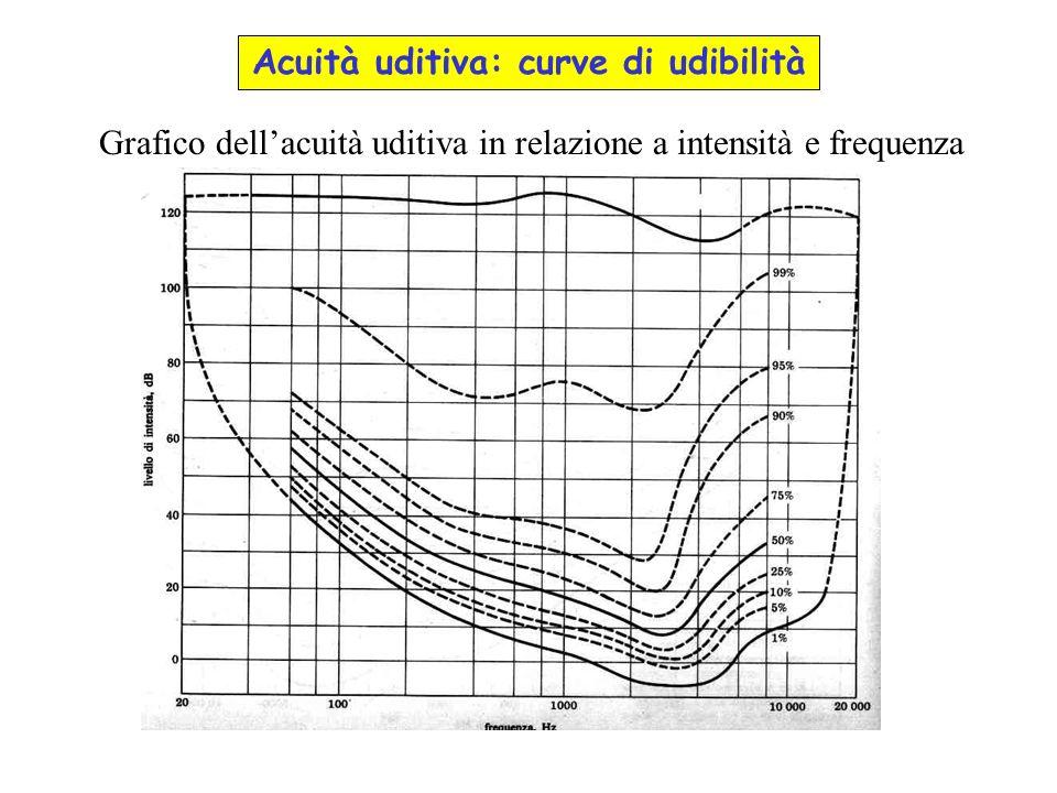 Grafico dellacuità uditiva in relazione a intensità e frequenza Acuità uditiva: curve di udibilità