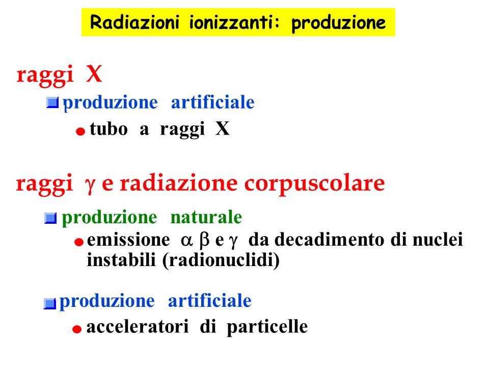 emissione e da decadimento di nuclei instabili (radionuclidi) raggi X raggi e radiazione corpuscolare produzione artificiale tubo a raggi X produzione