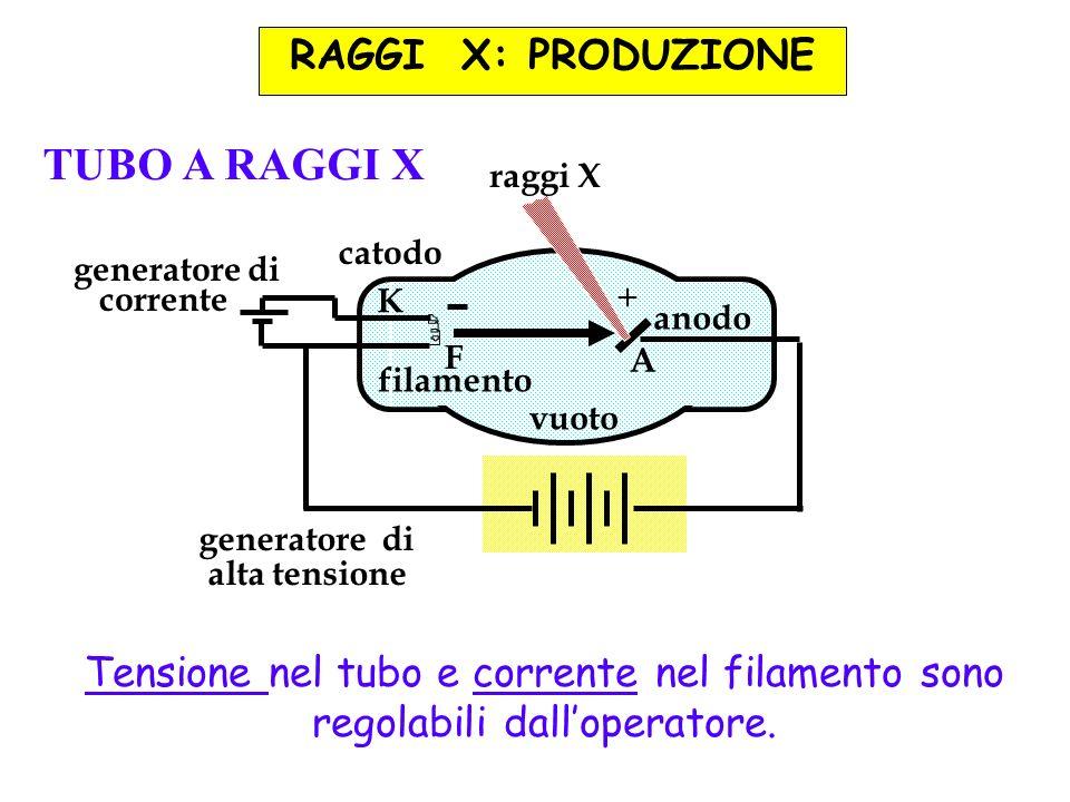 RAGGI X: PRODUZIONE anodo A filamento F catodo K generatore di alta tensione generatore di corrente vuoto + raggi X TUBO A RAGGI X Tensione nel tubo e