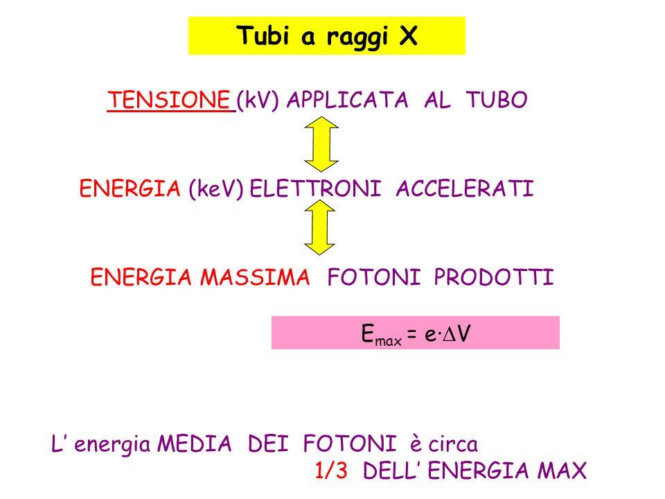 ENERGIA (keV) ELETTRONI ACCELERATI L energia MEDIA DEI FOTONI è circa 1/3 DELL ENERGIA MAX TENSIONE (kV) APPLICATA AL TUBO ENERGIA MASSIMA FOTONI PROD