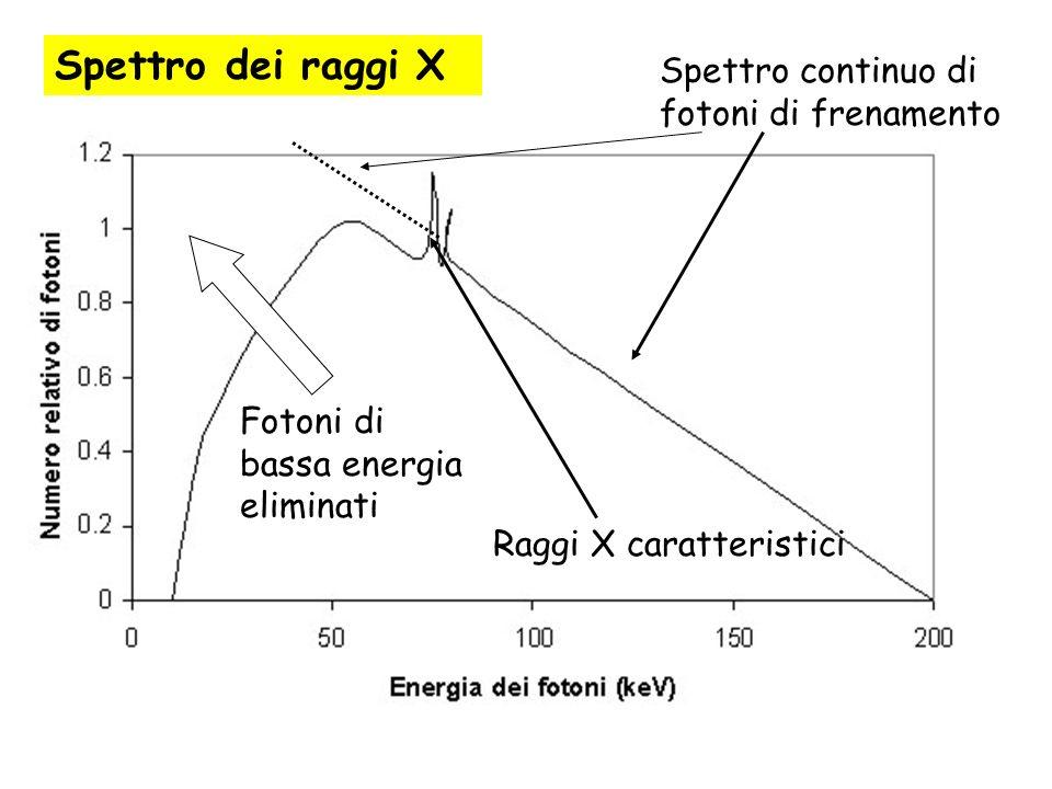 Spettro continuo di fotoni di frenamento Fotoni di bassa energia eliminati Raggi X caratteristici Spettro dei raggi X