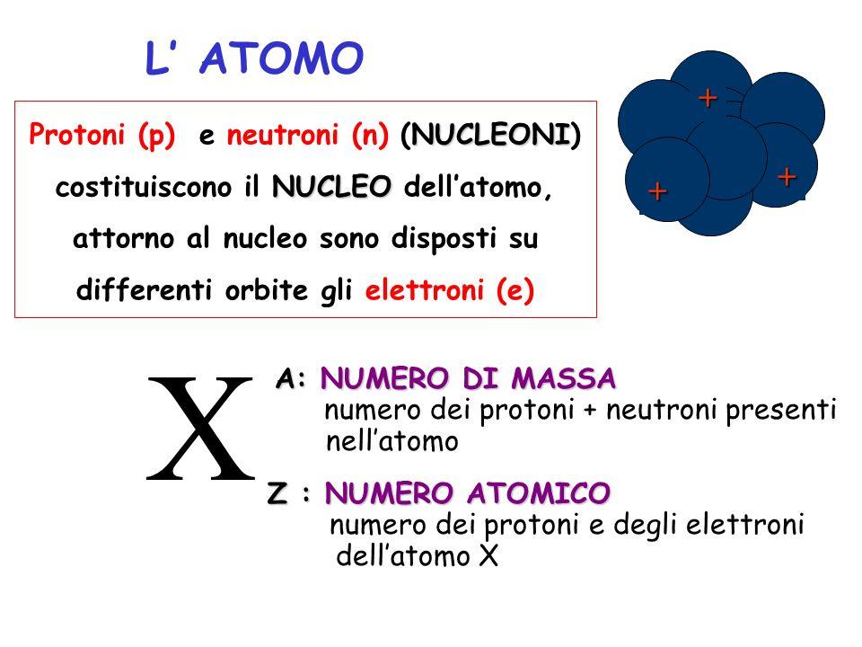 L ATOMO NUCLEONI Protoni (p) e neutroni (n) (NUCLEONI) NUCLEO costituiscono il NUCLEO dellatomo, attorno al nucleo sono disposti su differenti orbite