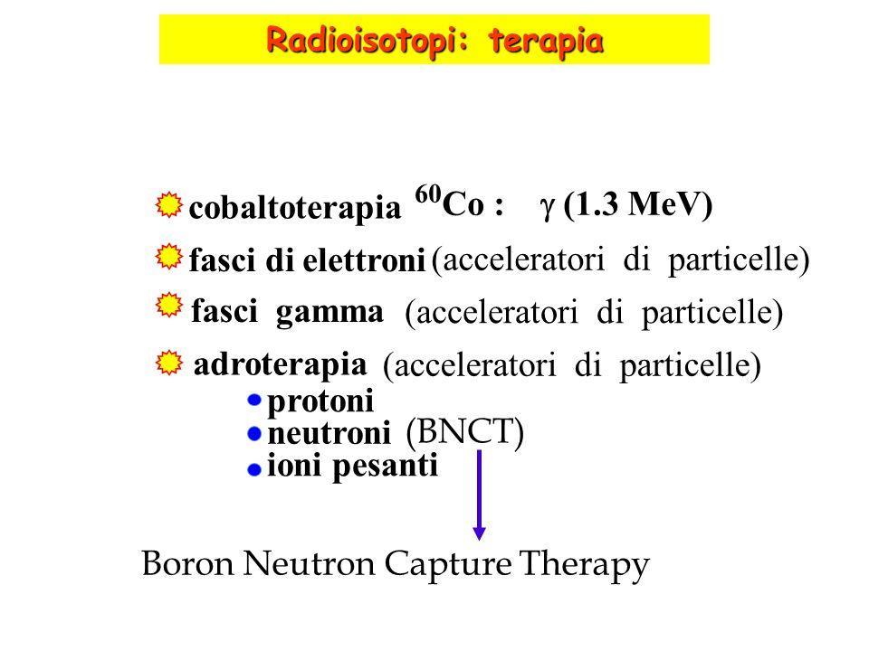 cobaltoterapia 60 Co : (1.3 MeV) fasci di elettroni (acceleratori di particelle) fasci gamma adroterapia (acceleratori di particelle) protoni neutroni
