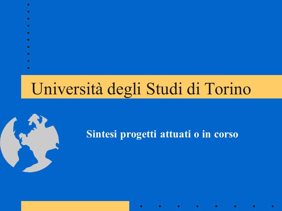 Università degli Studi di Torino Sintesi progetti attuati o in corso