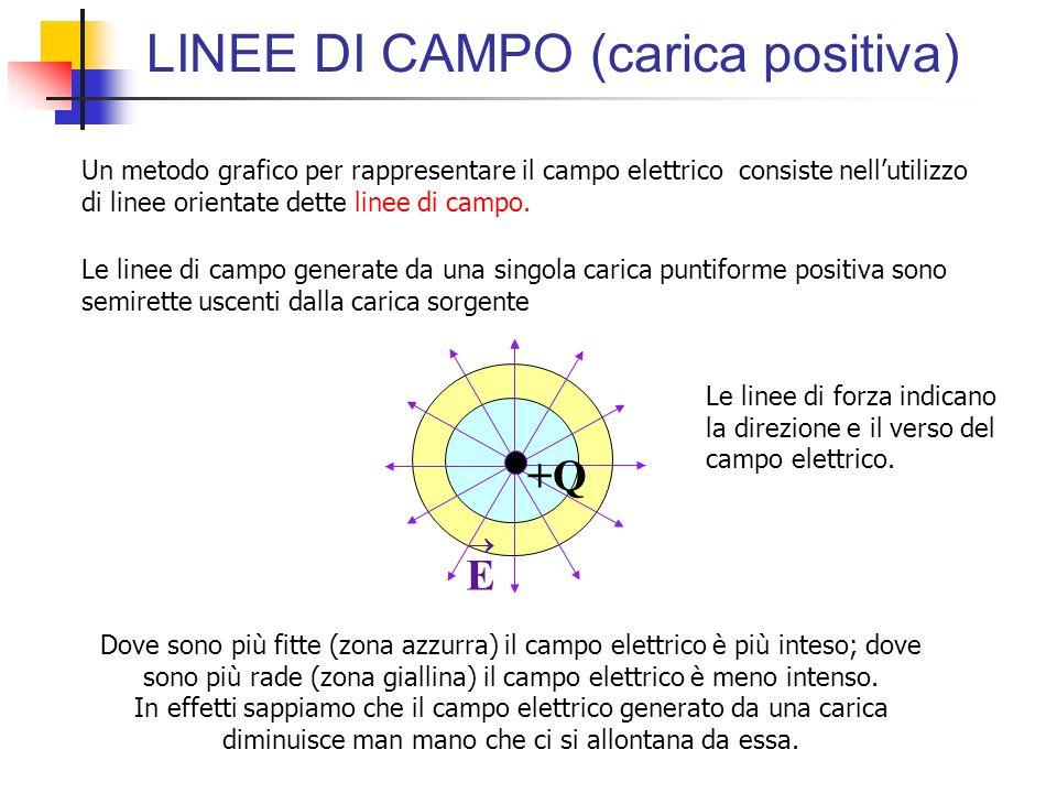 LINEE DI CAMPO (carica positiva) +Q E Le linee di campo generate da una singola carica puntiforme positiva sono semirette uscenti dalla carica sorgent