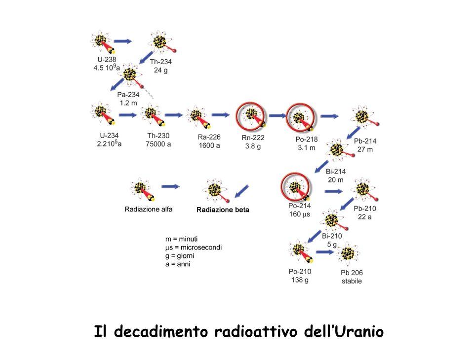 Il decadimento radioattivo dellUranio