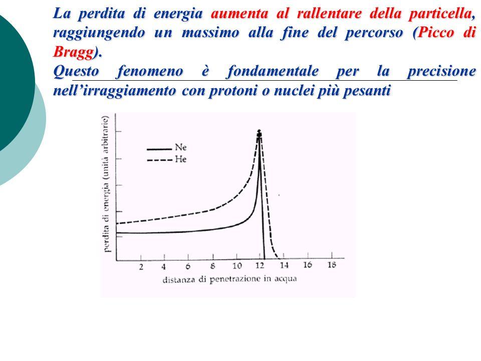 La perdita di energia aumenta al rallentare della particella, raggiungendo un massimo alla fine del percorso (Picco di Bragg). Questo fenomeno è fonda
