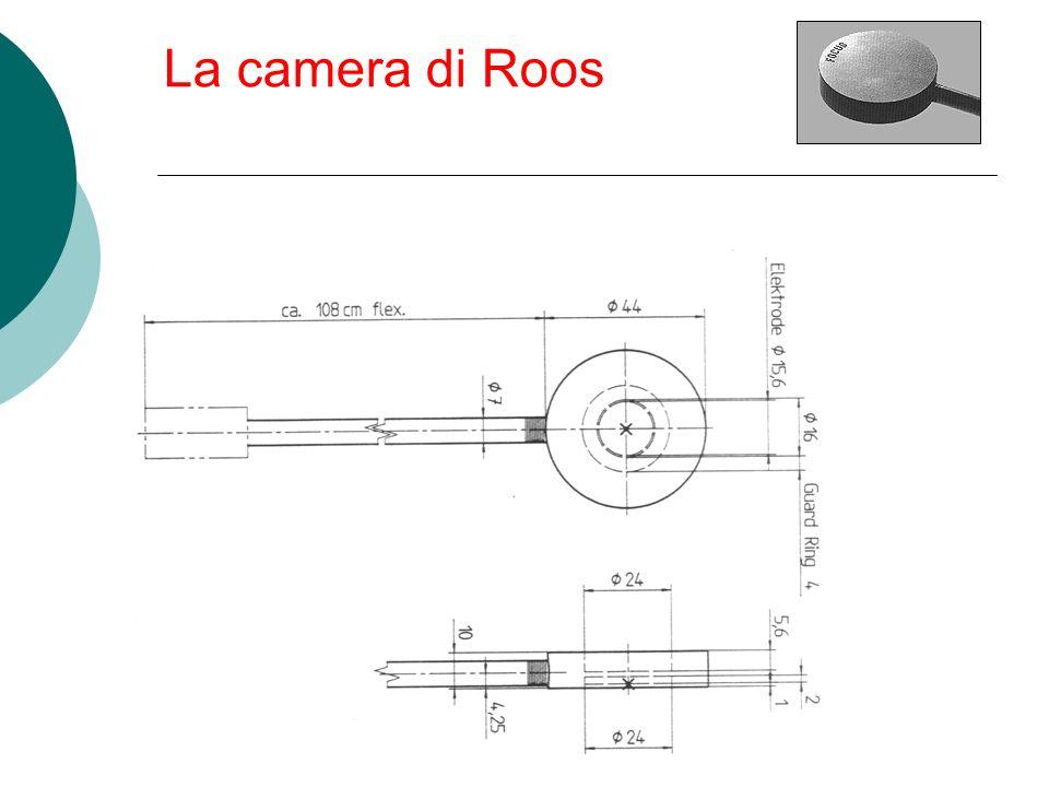 La camera di Roos