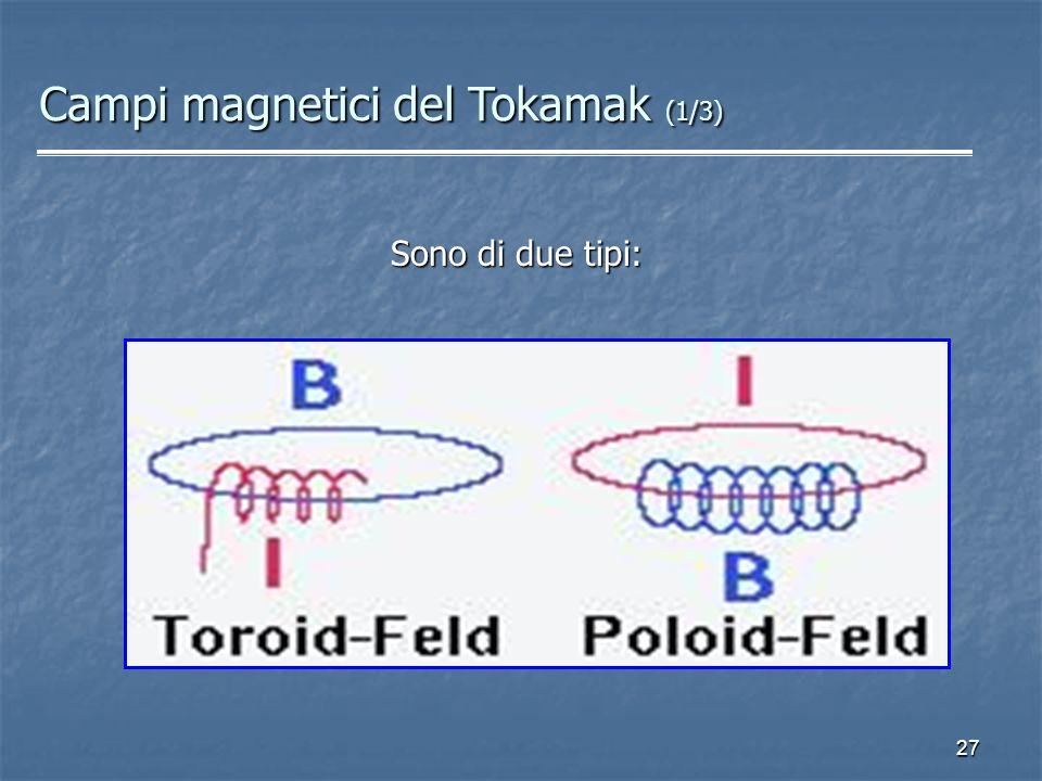 27 Sono di due tipi: Campi magnetici del Tokamak (1/3)