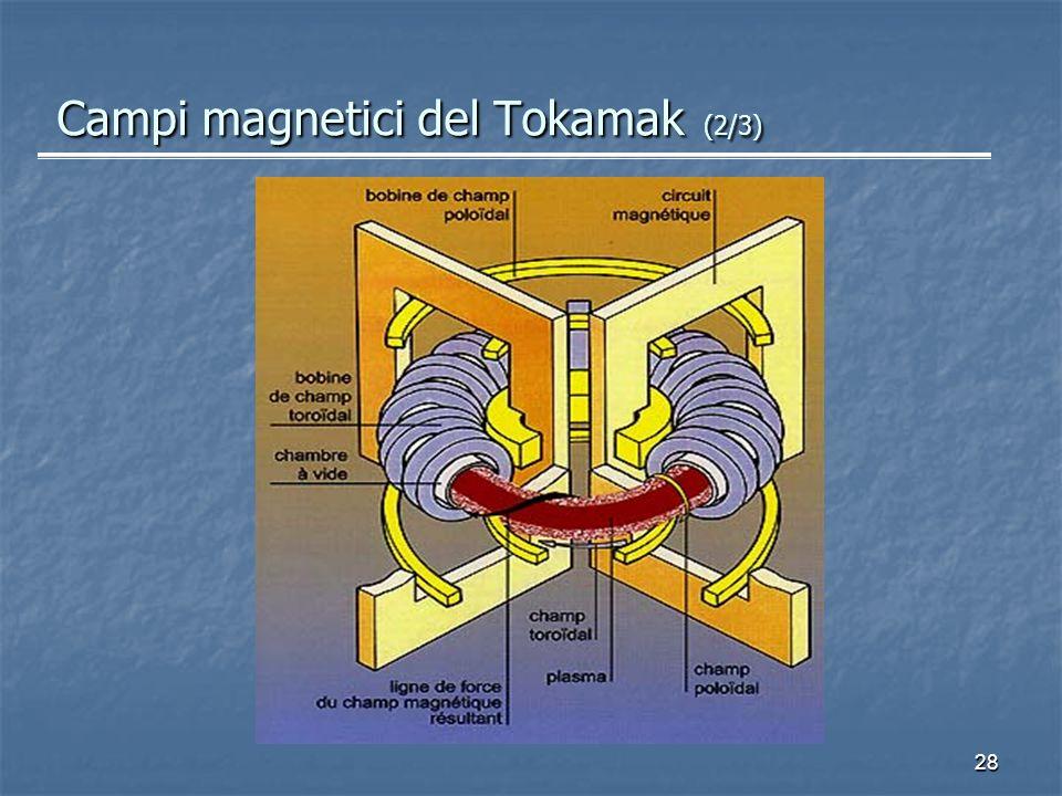 28 Campi magnetici del Tokamak (2/3)
