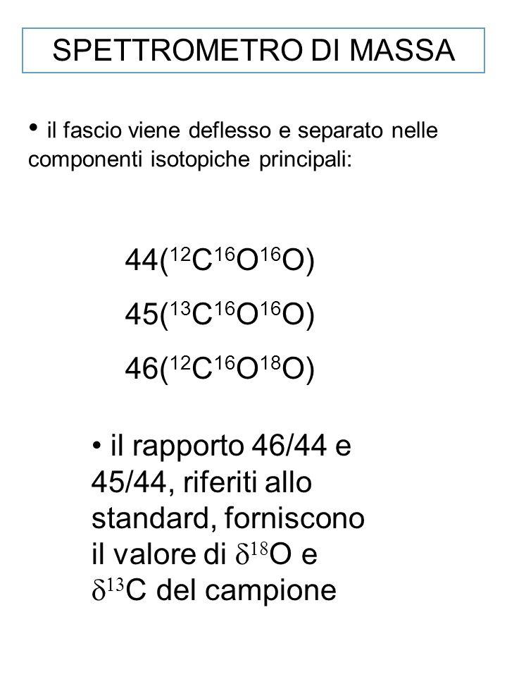 SPETTROMETRO DI MASSA il fascio viene deflesso e separato nelle componenti isotopiche principali: 44( 12 C 16 O 16 O) 45( 13 C 16 O 16 O) 46( 12 C 16