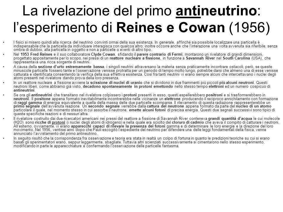 La rivelazione del primo antineutrino: lesperimento di Reines e Cowan (1956) I fisici si misero quindi alla ricerca del neutrino convinti ormai della