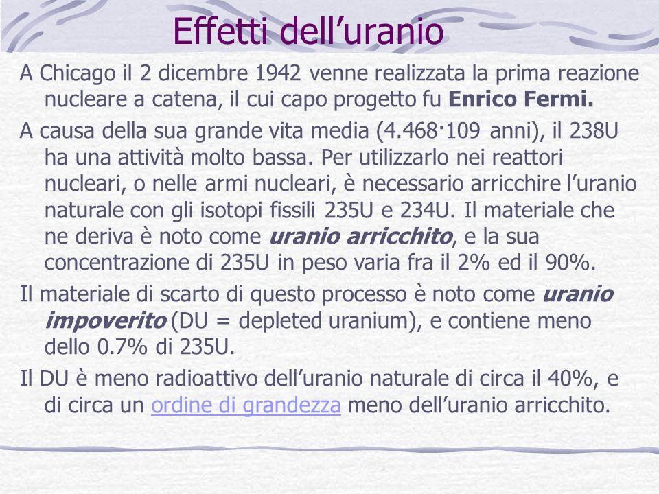 Effetti delluranio A Chicago il 2 dicembre 1942 venne realizzata la prima reazione nucleare a catena, il cui capo progetto fu Enrico Fermi.