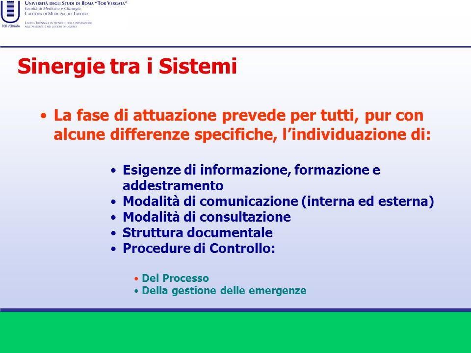 La fase di attuazione prevede per tutti, pur con alcune differenze specifiche, lindividuazione di: Esigenze di informazione, formazione e addestrament