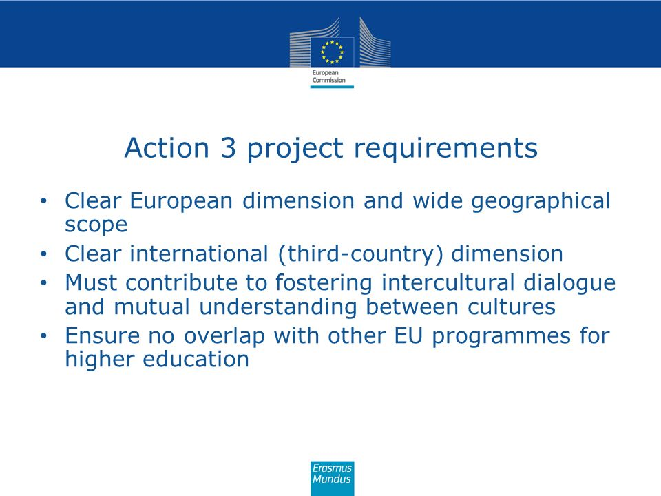 Action 3 project requirements Clear European dimension and wide geographical scope Clear international (third-country) dimension Must contribute to fo