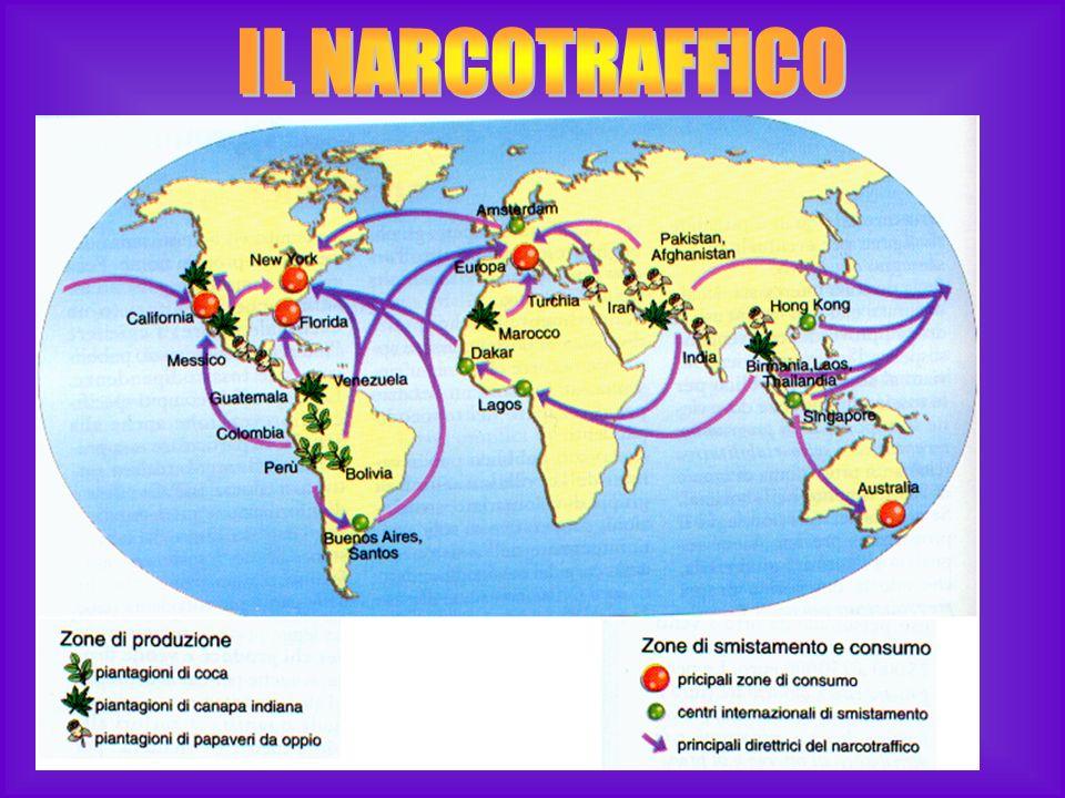 Abbiamo consultato i siti: -www.venetosociale.it;www.venetosociale.it -www.upgo.dronet.org.