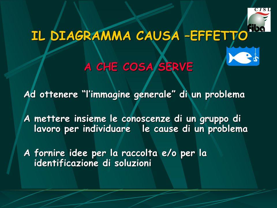 A CHE COSA SERVE Ad ottenere limmagine generale di un problema A mettere insieme le conoscenze di un gruppo di lavoro per individuare le cause di un p