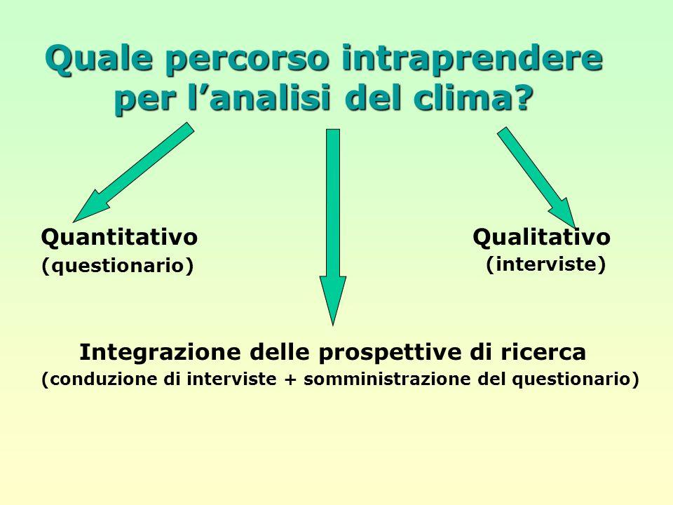 Quale percorso intraprendere per lanalisi del clima? Quantitativo (questionario) Qualitativo (interviste) Integrazione delle prospettive di ricerca (c