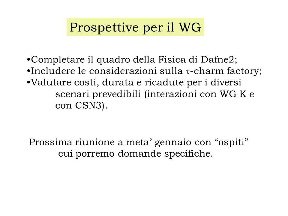 Prospettive per il WG Completare il quadro della Fisica di Dafne2; Includere le considerazioni sulla -charm factory; Valutare costi, durata e ricadute per i diversi scenari prevedibili (interazioni con WG K e con CSN3).
