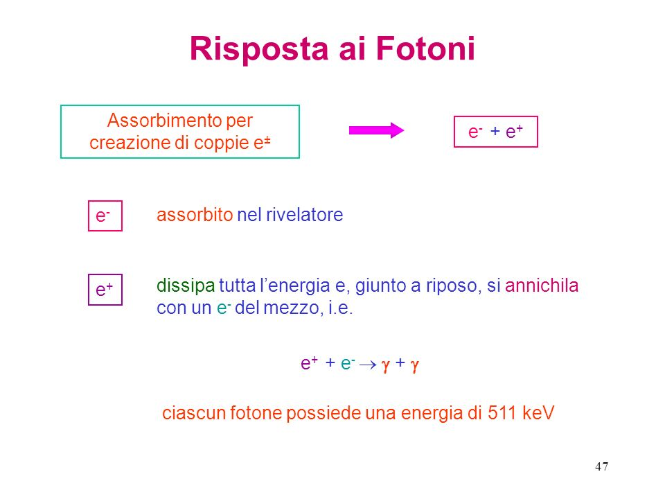 47 Risposta ai Fotoni Assorbimento per creazione di coppie e ± e - + e + e+e+ e-e- assorbito nel rivelatore dissipa tutta lenergia e, giunto a riposo,