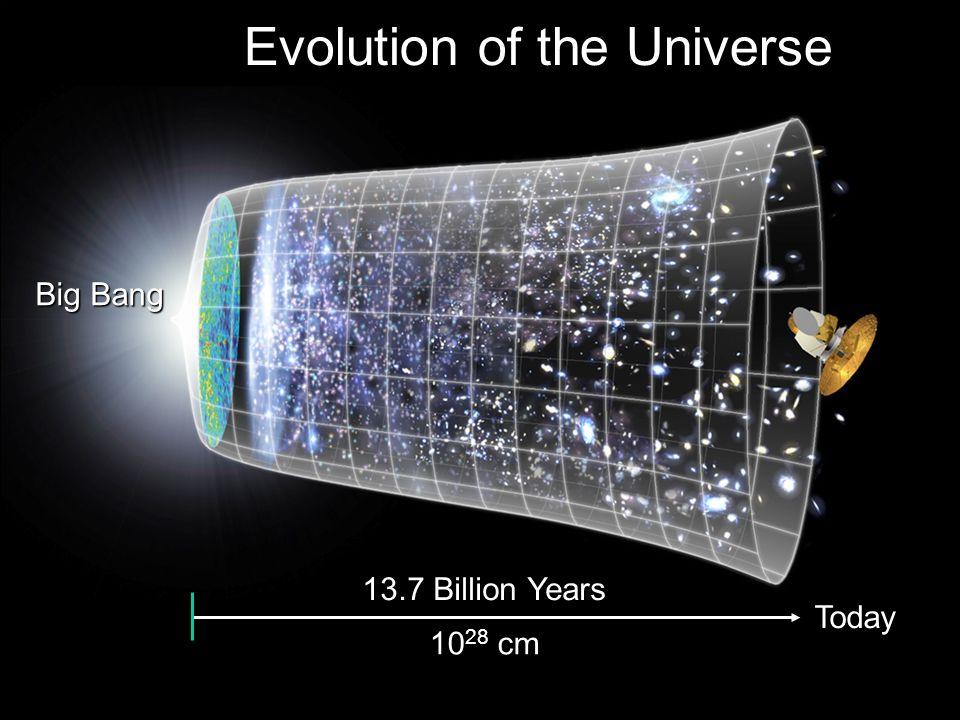 F. Gianotti, G8 HORCs, 18/5/2009 Si studiano le particelle elementari, ovvero i mattoni fondamentali della materia, come elettroni e quark, e le forze