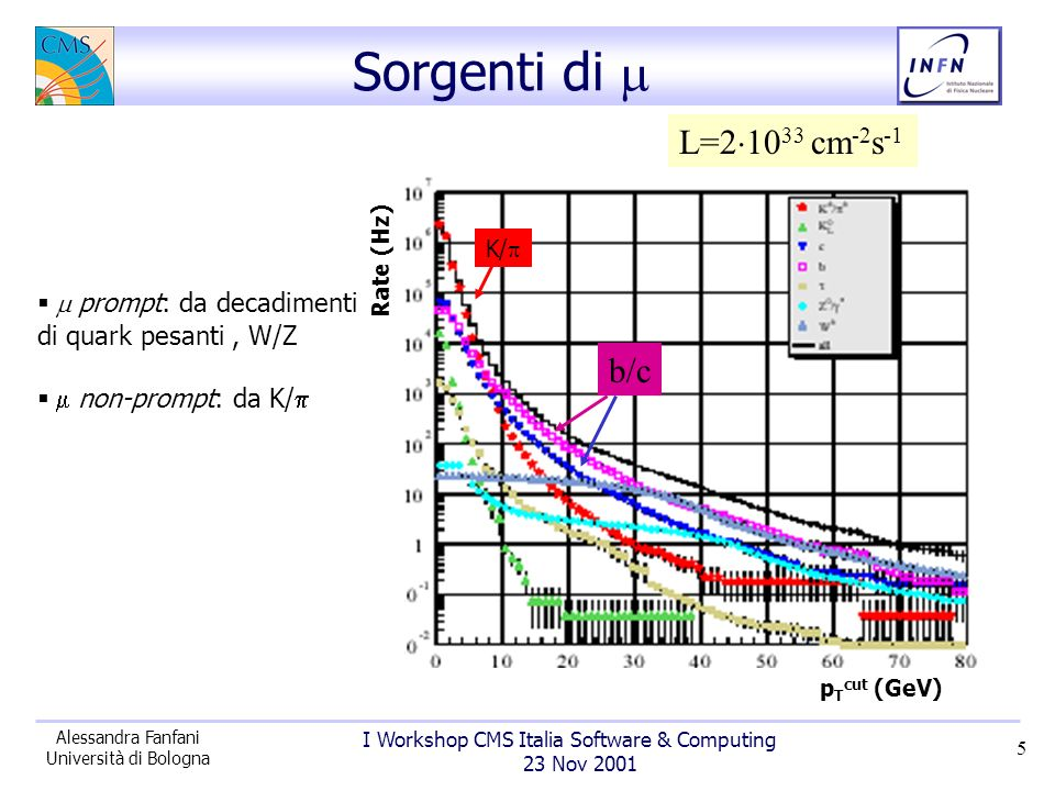 I Workshop CMS Italia Software & Computing 23 Nov 2001 Alessandra Fanfani Università di Bologna 5 Sorgenti di prompt: da decadimenti di quark pesanti, W/Z non-prompt: da K/ p T cut (GeV) Rate (Hz) L=2 10 33 cm -2 s -1 K/ b/c