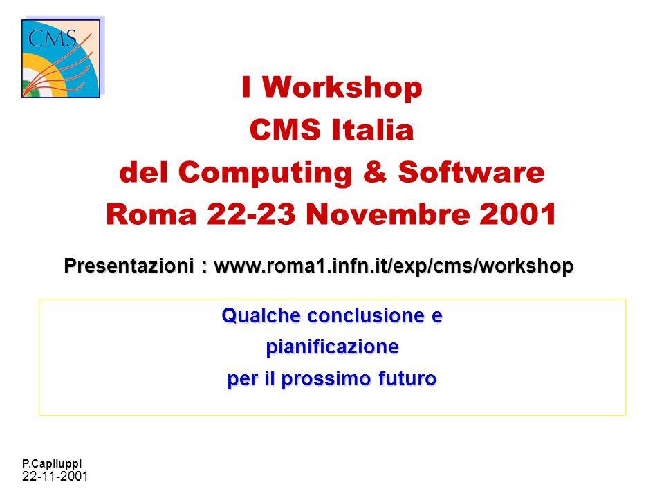 22-11-2001 P.Capiluppi I Workshop CMS Italia del Computing & Software Roma 22-23 Novembre 2001 Qualche conclusione e pianificazione per il prossimo fu