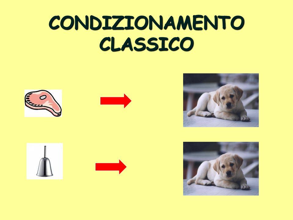 CONDIZIONAMENTO CLASSICO