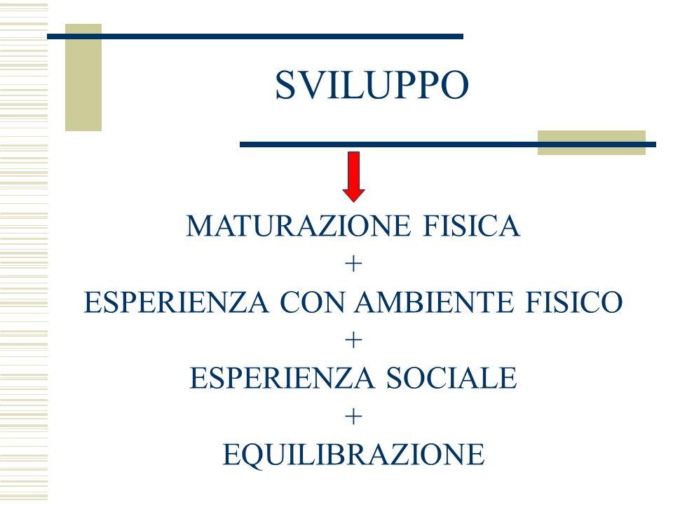SVILUPPO MATURAZIONE FISICA + ESPERIENZA CON AMBIENTE FISICO + ESPERIENZA SOCIALE + EQUILIBRAZIONE