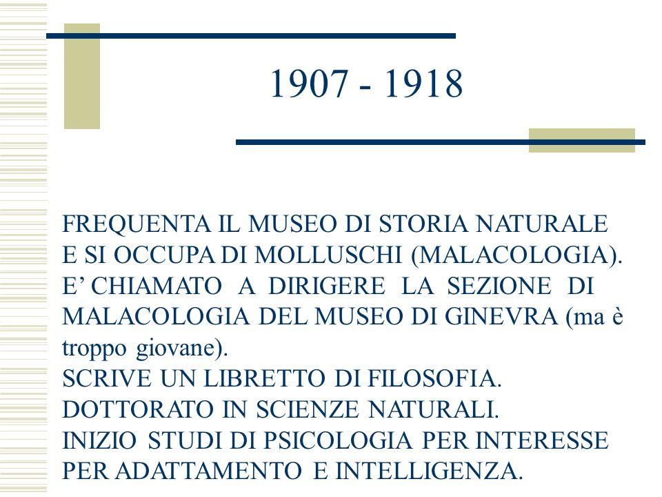1907 - 1918 FREQUENTA IL MUSEO DI STORIA NATURALE E SI OCCUPA DI MOLLUSCHI (MALACOLOGIA).