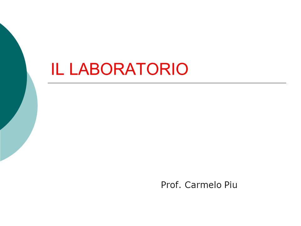 IL LABORATORIO Prof. Carmelo Piu