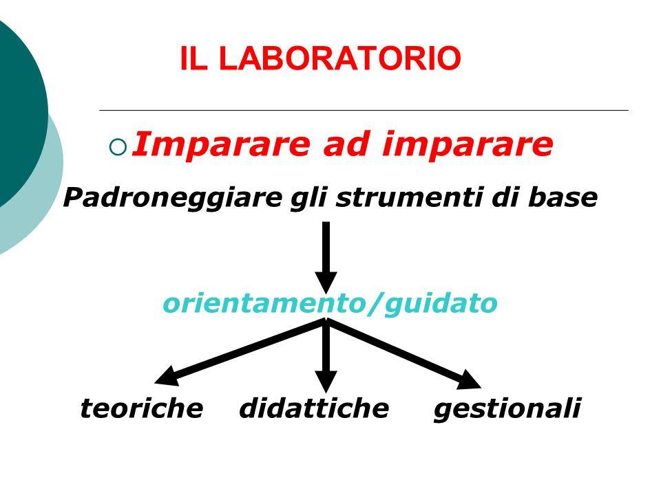 IL LABORATORIO Imparare ad imparare Padroneggiare gli strumenti di base orientamento/guidato teoriche didattiche gestionali