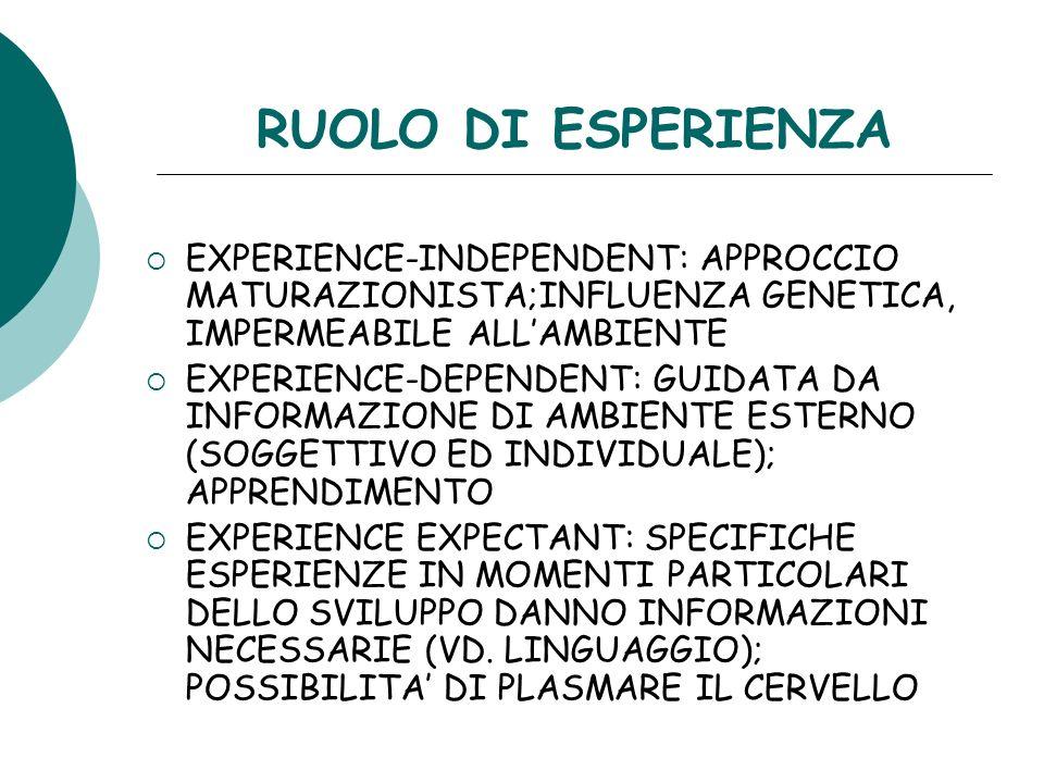 RUOLO DI ESPERIENZA EXPERIENCE-INDEPENDENT: APPROCCIO MATURAZIONISTA;INFLUENZA GENETICA, IMPERMEABILE ALLAMBIENTE EXPERIENCE-DEPENDENT: GUIDATA DA INF