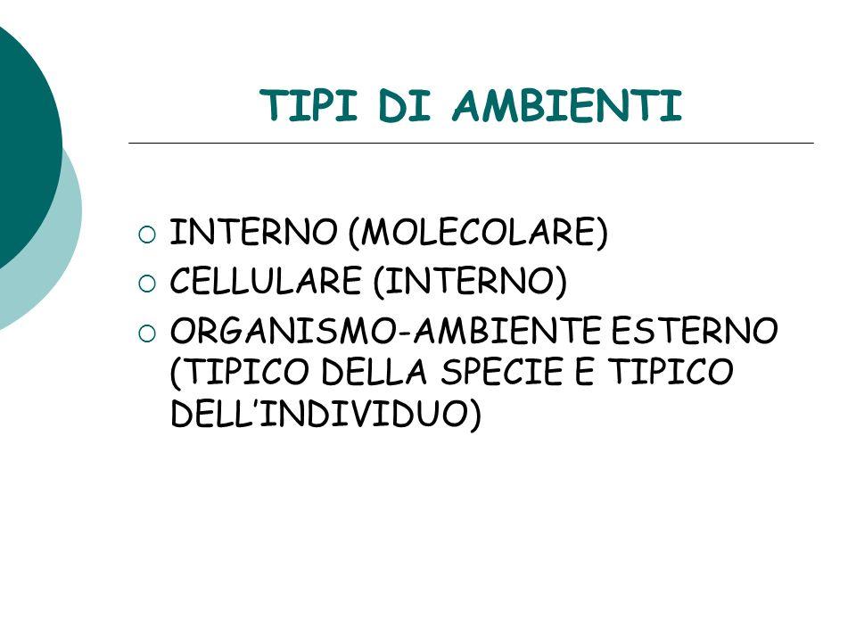 TIPI DI AMBIENTI INTERNO (MOLECOLARE) CELLULARE (INTERNO) ORGANISMO-AMBIENTE ESTERNO (TIPICO DELLA SPECIE E TIPICO DELLINDIVIDUO)