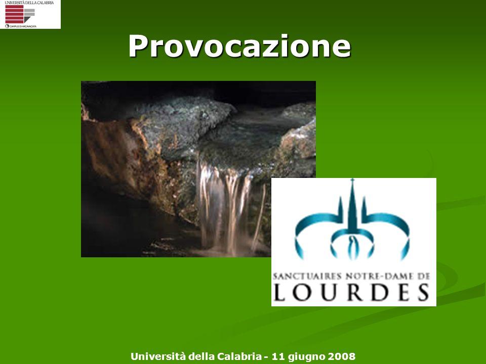 Università della Calabria - 11 giugno 2008 Provocazione