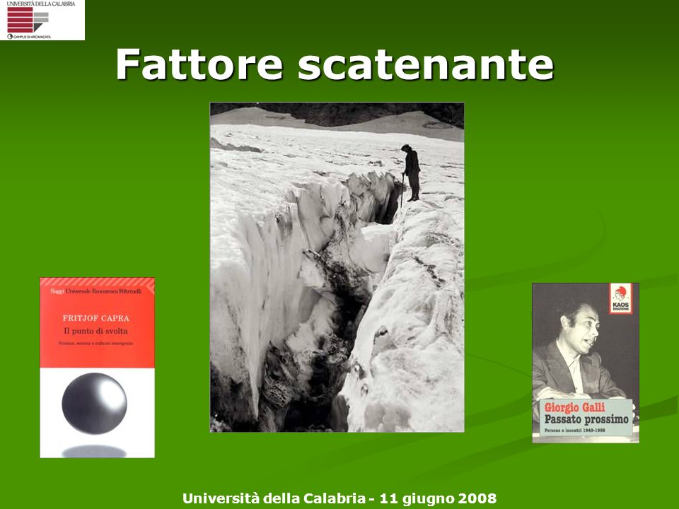 Università della Calabria - 11 giugno 2008 Fattore scatenante