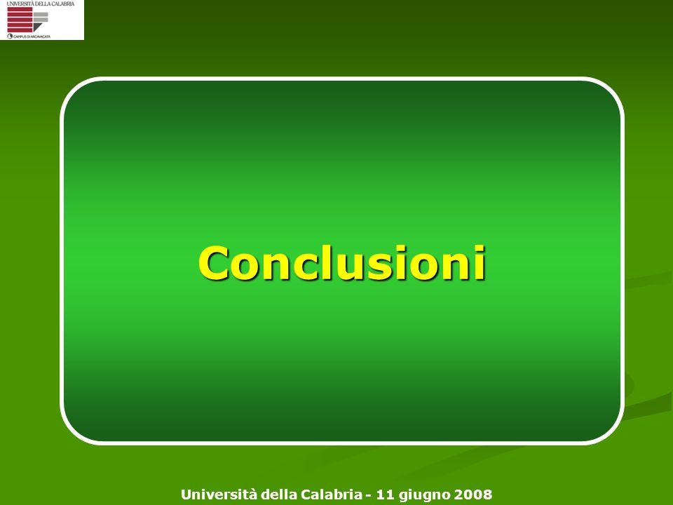 Università della Calabria - 11 giugno 2008 Conclusioni