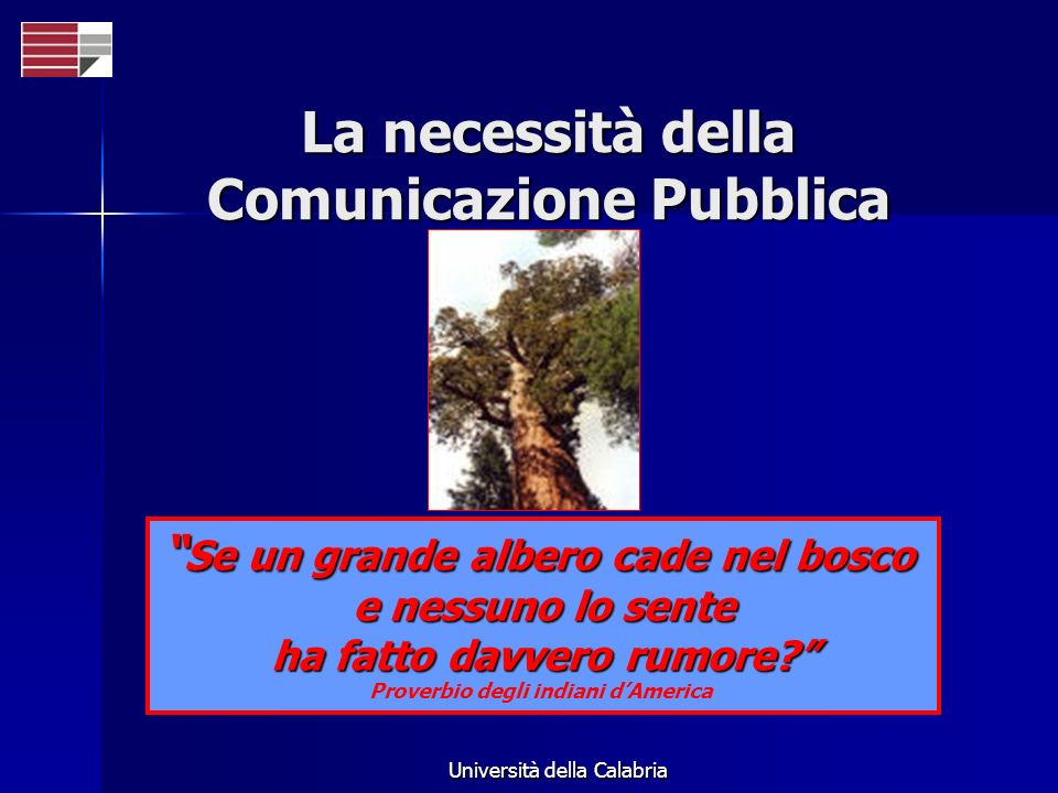 Università della Calabria Se un grande albero cade nel bosco Se un grande albero cade nel bosco e nessuno lo sente ha fatto davvero rumore? Proverbio