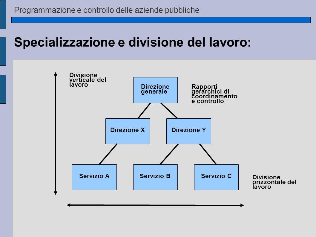 Programmazione e controllo delle aziende pubbliche Specializzazione e divisione del lavoro: Servizio AServizio BServizio C Direzione XDirezione Y Dire