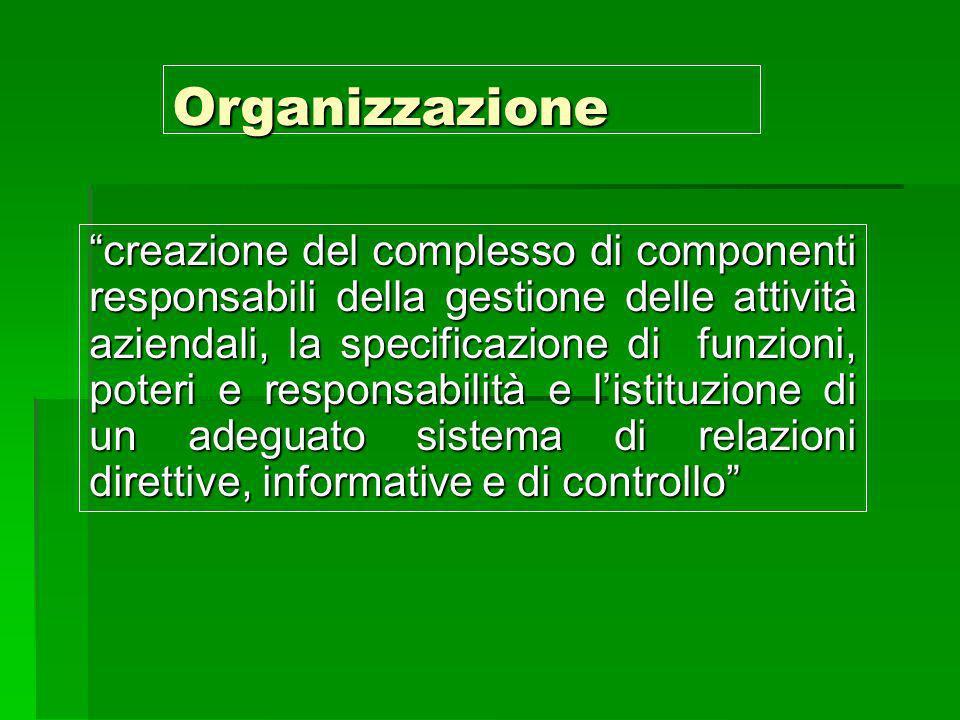 Organizzazione creazione del complesso di componenti responsabili della gestione delle attività aziendali, la specificazione di funzioni, poteri e res