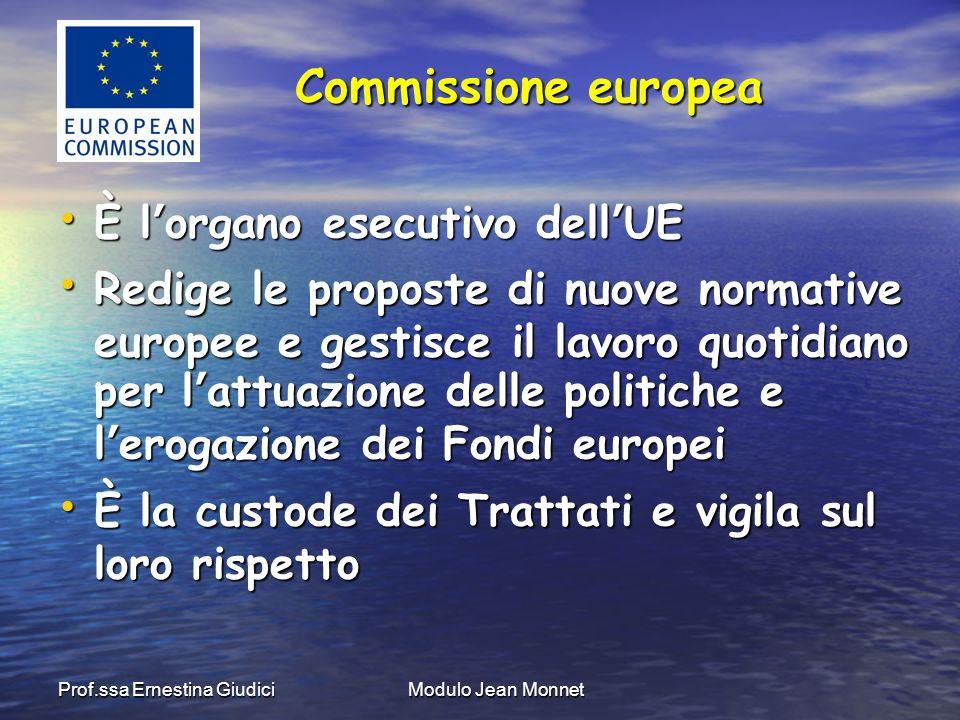 Prof.ssa Ernestina GiudiciModulo Jean Monnet Presidente: José Manuel Barroso Presidente: José Manuel Barroso 1 commissario per Stato membro 1 commissario per Stato membro Struttura