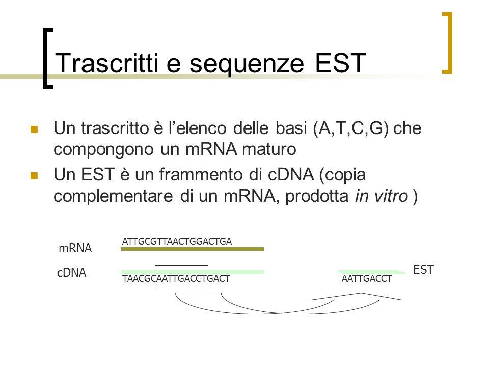 Trascritti e sequenze EST Un trascritto è lelenco delle basi (A,T,C,G) che compongono un mRNA maturo Un EST è un frammento di cDNA (copia complementar