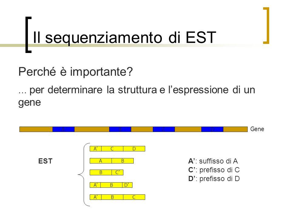 Il sequenziamento di EST Perché è importante? Gene CDAB AB ABC DAB CB DAC A: suffisso di A C: prefisso di C D: prefisso di D EST … per determinare la