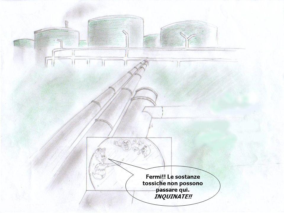 Abiti a Busalla Chissà quanto inquinamento! No, perché la IPLOM lo ha ridotto!