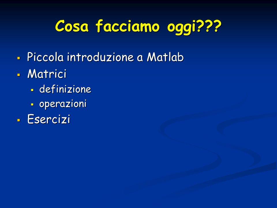 Cosa facciamo oggi??? Piccola introduzione a Matlab Piccola introduzione a Matlab Matrici Matrici definizione definizione operazioni operazioni Eserci