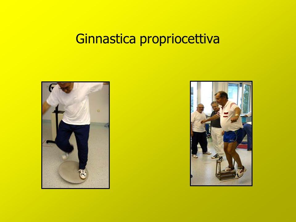 Ginnastica propriocettiva