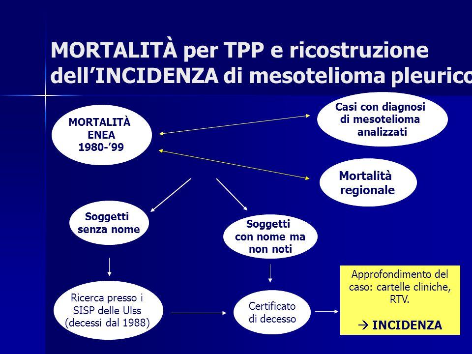 MORTALITÀ per TPP e ricostruzione dellINCIDENZA di mesotelioma pleurico MORTALITÀ ENEA 1980-99 Casi con diagnosi di mesotelioma analizzati Soggetti se